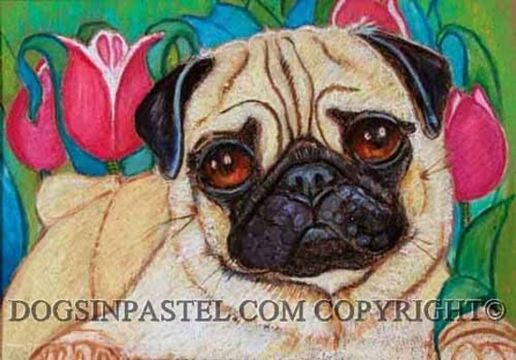 Pug Painting Art Dog Tulips Original Oil Pastel Painting Dog