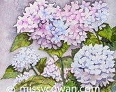 MOODY HUES- HYDRANGEA-Giclee Print of Original Watercolor Painting