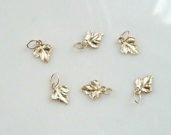 6 pcs 14K Gold filled tiny maple leaves (8x14mm)