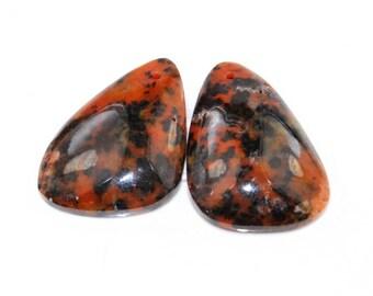 2 Pcs Rare Kalkaadoo Leopard Skin Jasper pendant bead J21B166521