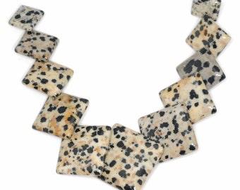 Stunning 11 pieces Dalmation Jasper GRaduation Pendant Bead Set J44B5484