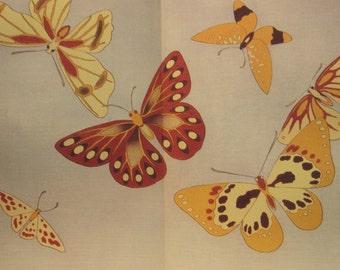 Vintage Book of Colorful Butterflies--A Flight Of Butterflies