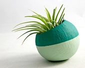 Mini Air Plant Teal Ombre Colorblock Pod // Air Plant Pot