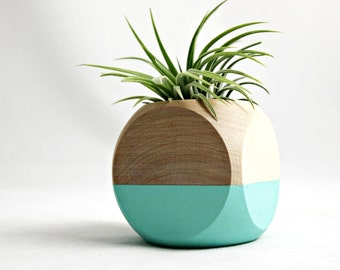 Mini Geometric Air Plant Planter // Aqua + Wood (with air plant)