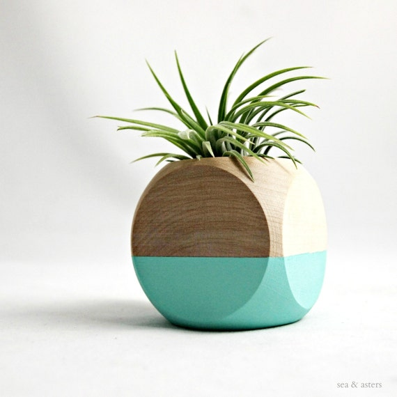 Geometric Air Plant Cube Planter // Aqua + Wood Colorblock