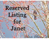 Reserved for Janet - Fine Art Photography, Black Crow in Pink Blossoms, 8x10, Spring