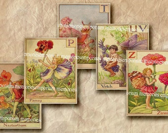 Flower Fairies Alphabet M - Z Antique Decoupage Floral Botanical Old Flora ABC Spelling Letters Digital Collage Sheet Instant Download 339