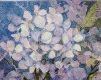 White Hydrangea Original Watercolor Painting