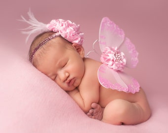 Pink Dreams Vintage Butterfly Wings & Headband