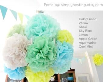 20 Tissue Paper Pom Poms, baby boy baby shower, 1st birthday party, boy nursery decor