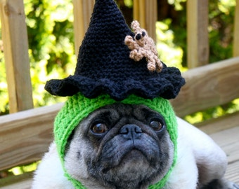 Spooky Witch Hat with Creepy Spider - Dog Hat - Made To Order