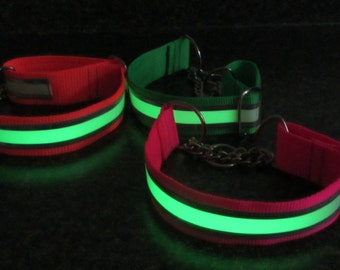 Glow in the Dark Reflective Chain Martingale Dog Collar