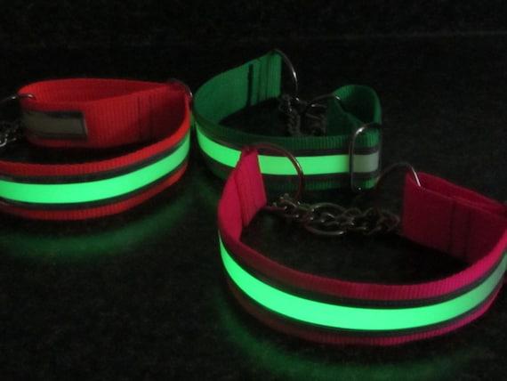 Glow In The Dark Reflective Chain Martingale Dog Collar