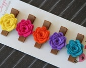 Baby Hair Clips Baby Barrettes Toddler Hair Clips Girls Hair Clips Summer Pack Petite Rose Hair Clips