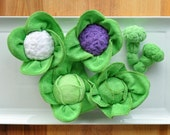 Baby Washcloth Cabbage, Cauliflower and Broccoli, WashAgami ™ Instructional Video