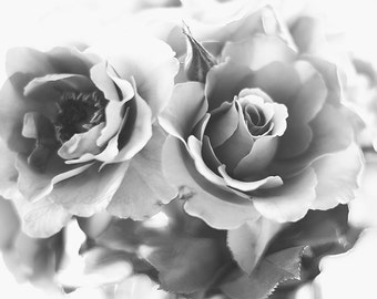 black and white rose photograph classic romantic fine art photography flower photo floral art wall decor