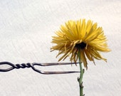 Wrought Iron fork, two pronged beauty, The Chrysanthemum and the fork