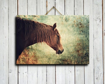 "The Red Horse - 16x24"" canvas print - Horse photography - Horse art - Horse decor - Horse decoration - Horse canvas - Green and red decor"