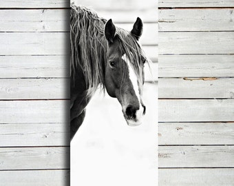 looking 20x60 canvas print horse photography black and white horse photography - Horse Decor