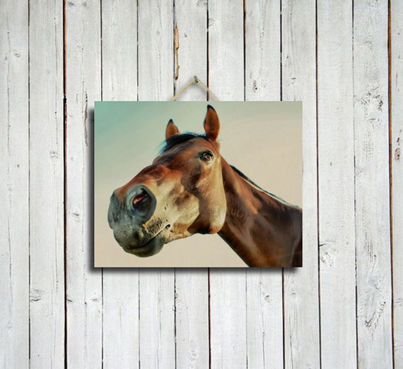 Horse stare down -16x20 canvas Print - Brown wall decor - Western wall decor - Horse wall decor - Brown horse.