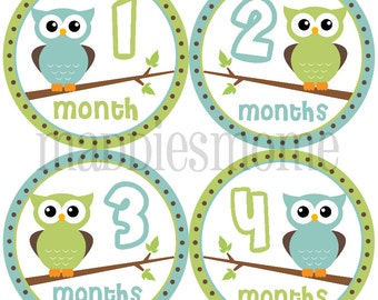 Monthly Baby Boy Stickers Baby Month Stickers, Monthly Bodysuit Sticker, Monthly Stickers Owls (Warren)