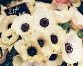 SALES -40%French pastel bouquet peach cream flowers - Rendez-vous in Paris -  fine art film print 8 x 12