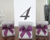 Table Number Holders - Wedding Decor - Ten (10) with Silver and Eggplant Satin Ribbon - Customize Your Colors