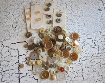 Beige Neutral Vintage Buttons, over 30