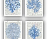 Seafan Ocean Blue prints, Sea fan, sea grass, coral, nautical Dictionary Prints, bathroom wall decor, beach decor cottage wall hangings
