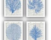 Seafan Ocean Blue prints, Sea fan, sea grass, coral, nautical Dictionary Prints, bathroom wall decor, beach decor cottage wall hangings