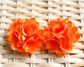 Adorable Shabby Clippies - Pair -ORANGE - No Slip Grip