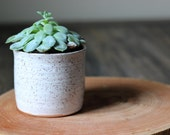 Small Rustic Modern Planter in Speckled White