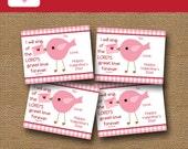 Girls Valentine Card | Bird Valentine | DIY PRINTABLE | Christian, Scripture Verse Classroom Valentine for Children | Instant Download