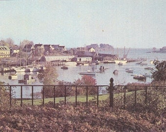 A Typical Maine Coast Scene in Camden, Maine Topographical Picture Post Card - 427