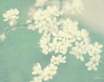 spring, green, white, flowers, blue blossoms, fine art photography