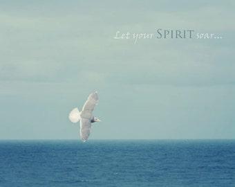 Oregon Beach Photography - Beach Photograph - Bird Photo - Typography - Inspirational - Ocean - Fine Art Photograph - Blue White Home Decor