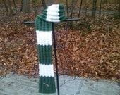 Reserved: Philadelphia Eagles Hand Knit Scarf