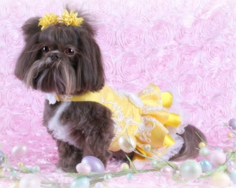 SAMPLE SALE:  SPECIAL Event Dog Party Dress