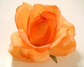 Rose Hair Clip REAL TOUCH Rose in Orange to Light Orange, for Wedding Flower Girl Bride Bridesmaid Autumn Fall Halloween Wedding Hat Shoes