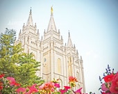 Salt Lake City Temple with Pink Flowers 8x10 Fine Art Photography Print