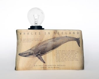 Driftwood table lamp. Blue whale. Wooden lamp. Whales. Reclaimed light. Reclaimed wood. New in the Box.