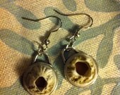 Barnacle Earrings from Maine Coast set in Polymer clay within pendants - caamsy