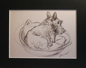 SCOTTISH TERRIER DOG 1937 'Mac' Lucy Dawson Scottish terrier Vintage mounted dog plate/print Janet in basket Unique Christmas Birthday gift