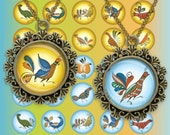 Uftyuzhskaya painting Folk Art birds Circles Digital Collage Sheet 1 inch. Printable round images for pendants cabochon button 187
