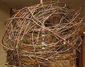 Chicken wire grapevine ball lamp