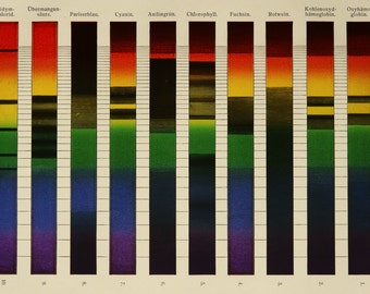 1897 Antique print of SPECTRAL ANALYSIS, Color Absorption. 119 years old lithograph