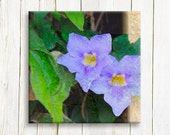 Floral art prints - purple flowers printed on canvas