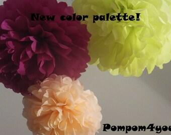 9 Tissue Paper Pom Poms
