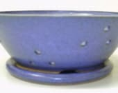 Purple footed Berry Bowl...