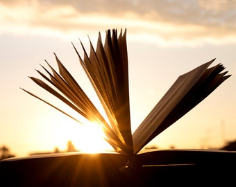 Book photography Digital Download Open book and Sunset Sun Rays Decorating Ideas Old books Library Art Gift Ideas Office Decor